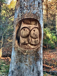 chainsaw sculpture of an owl