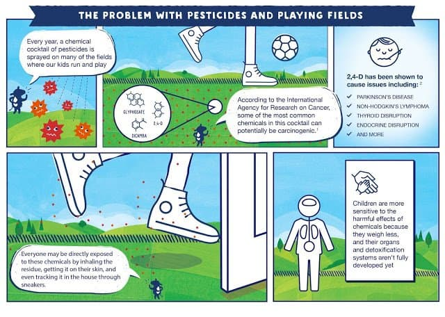 Stonyfield Organic Problem with Pesticides and Playing Fields